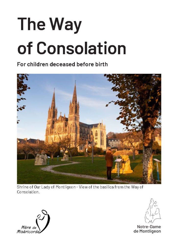 The Way of Consolation addresses people faced with the loss of the child they conceived and who did not get to live, whatever the reasons may be (ectopic pregnancy, miscarriage, abortion, medically terminated pregnancy, still born babies, etc.)