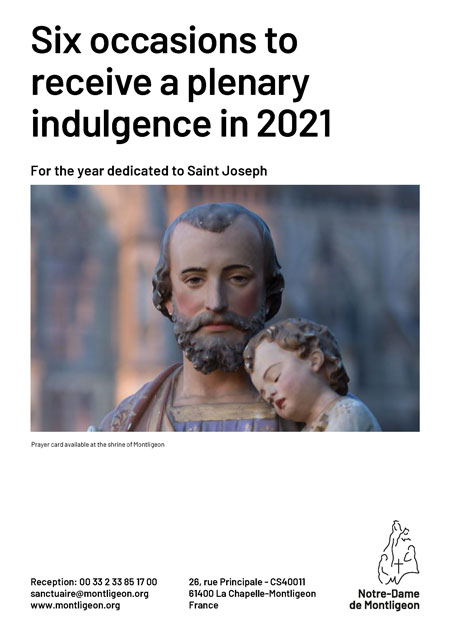 6 options for a plenary indulgence